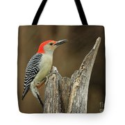 Red-belly At Stump Tote Bag