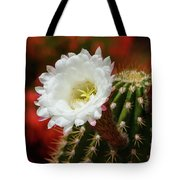 Red Bougainvillea Background For White Argentine Giant Flower Tote Bag