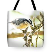 Red-breasted Nuthatch Tote Bag by Michael D Miller
