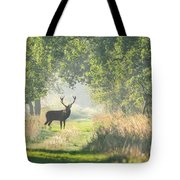 Red Deer In The Forest Tote Bag