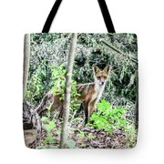 Red Fox In The Woods Tote Bag