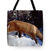 Red Fox Ontario Canada Tote Bag by Rick Veldman