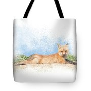 Red Kit Fox #16 - Yoga Sphinx Tote Bag by Patti Deters