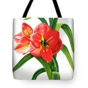 Red-orange Amaryllis Tote Bag
