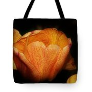 Red Orange Yellow Tulip Tote Bag