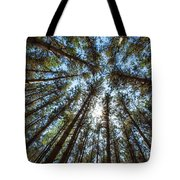 Red Pines 1 Tote Bag