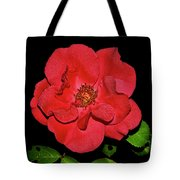 Red Rose With Dewdrops 038 Tote Bag