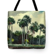 Red Shrt, Homosassa, Florida Tote Bag