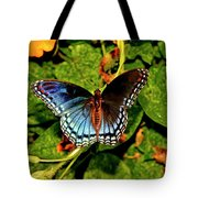 Red-spotted Purple Butterfly 017 Tote Bag