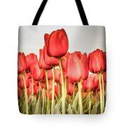 Red Tulip Field In Portrait Format. Tote Bag
