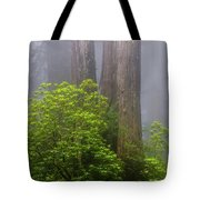 Redwoods By Crescent City 7 Tote Bag
