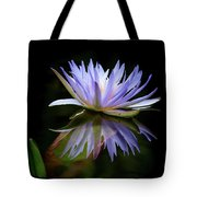 Reflected In The Water Tote Bag by Sabrina L Ryan