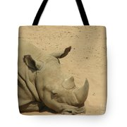 Resting Rhinoceros With His Head Down In A Sandy Area Tote Bag