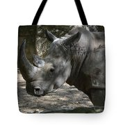 Rhino Standing In The Shade On A Summer Day Tote Bag