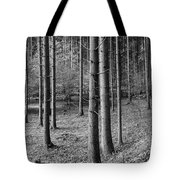 Road Passing Through Forest, Stuttgart Tote Bag