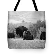 Rocky Mountain Bison Tote Bag