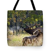Rocky Mountain Bull Elk Bugeling Tote Bag by Nathan Bush