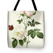Rosa Bengale The Hymenes By Redoute Tote Bag