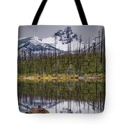 Round Lake Reflection Tote Bag