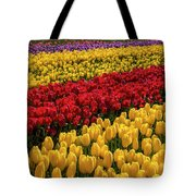 Row After Row After Row Of Tulips Tote Bag