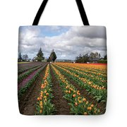 Rows And Rows Of Tulips By Tl Wilson Photography Tote Bag by Teresa Wilson