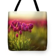 Rows Of Magenta Painterly Tulips Tote Bag