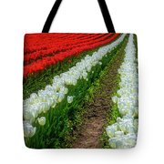 Rows Of White And Red Tulips Tote Bag