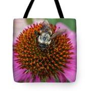 Rudbeckia Coneflower With Bee, Canada Tote Bag