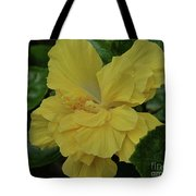 Ruffled Yellow Hibiscus Tote Bag by Patricia Strand