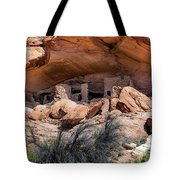 Ruins At Butler On The San Juan River  Tote Bag