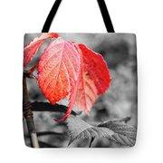 Rusty Leaves Tote Bag