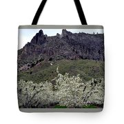 Saddle Rock And Apple Blooms Tote Bag