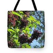 Sambucus Elderberry Sureau Tote Bag