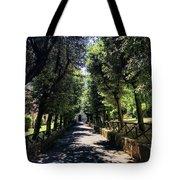 San Paolo Alle Tre Fontane Tote Bag
