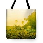 Sapa Landscape, Vietnam Tote Bag
