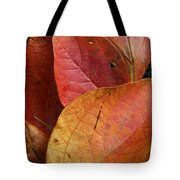 Sassafras Autumn Tote Bag