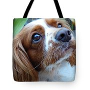 Say Please Tote Bag
