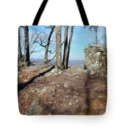 Scenic Horizon View Tote Bag