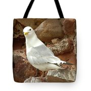 Seagull On Rock Tote Bag