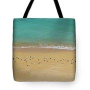 Seagulls Relaxing In Deserta Beach Tote Bag