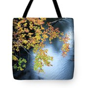 Seasons Of Change Tote Bag by Fran Riley