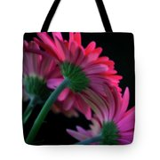 Seeking Sunlight Tote Bag
