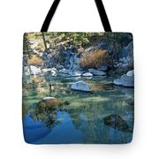 Sekani Autumn Portrait Tote Bag by Sean Sarsfield