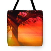 Shade Tree At Dawn Tote Bag