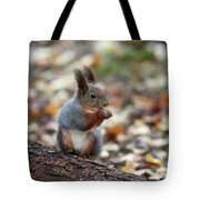 Shadow Boxing. Red Squirrel Tote Bag