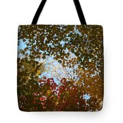 Shadow Canopy Tote Bag by Dylan Punke