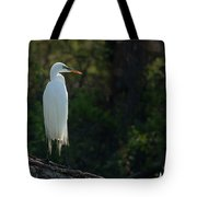 Shadow Heron Tote Bag