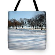 Shadows In The Snow Tote Bag