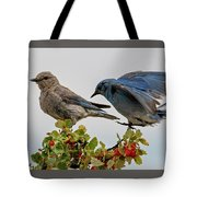 Sharing A Perch Tote Bag