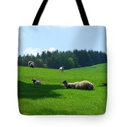Sheep And Lambs In A Field Tote Bag